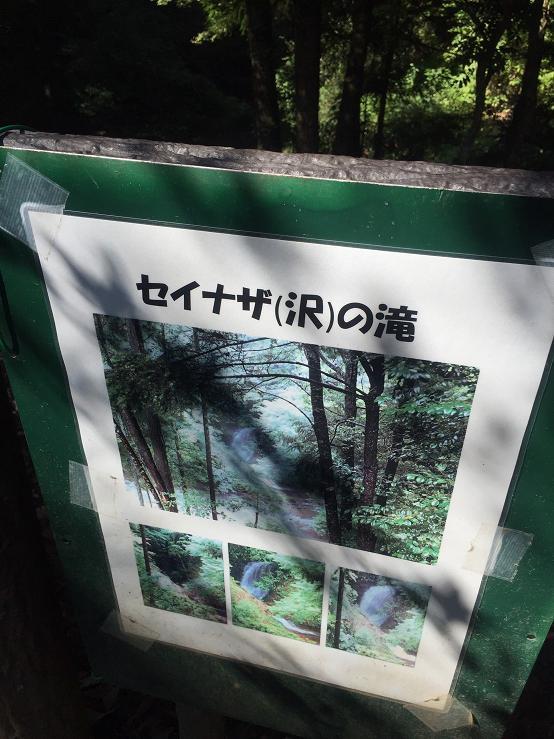 土曜 たき看板.jpg