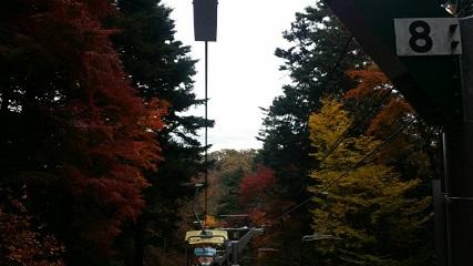 11月23日リフトからの紅葉.jpg